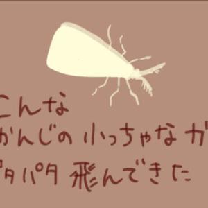 まさかそんな小さな蛾で・・・