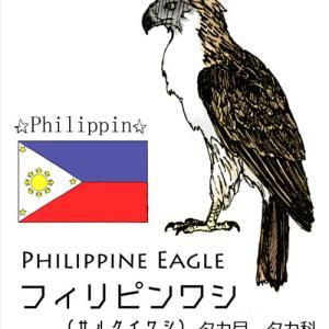 国鳥メモ:フィリピン