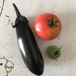 楽しい野菜生活 収穫!ナストマトキュウリ!