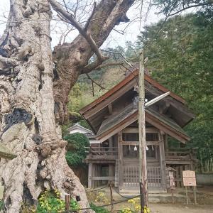【出雲大社周辺を散策編】2020.12.04-2020.12.06島根県旅行
