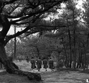 フィルムスキャンしたモノクロ写真集(7)