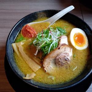 新潟市東区の「颯々樹」が来月から煮干し味噌を提供開始!期待大!