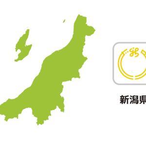 魔夜峰央先生の「2万光年翔んで新潟」がいよいよ10月19日に発売!