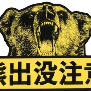 新潟県が「クマ出没特別警報」を延期!冬眠の季節も油断できない