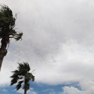 台風8号が日本に接近中!このコースは… 新潟県もヤバい?