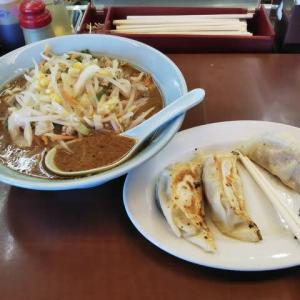 満北亭瑞穂店 味噌ラーメン 肉餃子