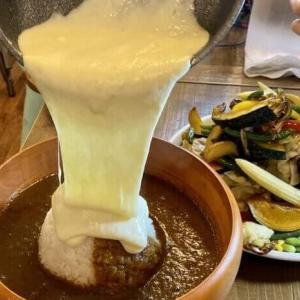 リトルヤミー【有吉ゼミ】大食いチャレンジグルメのび~るチーズの爆盛野菜カレー【デカ盛り】