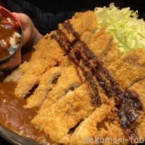 けんちゃん食堂【デカ盛り】PS純金で有名なご当地大食いアイドルと4名17kgの大食い会