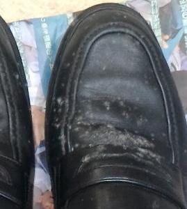 靴が買えないのでカビだらけの靴を履く