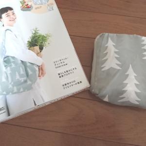 【ムック本】北欧系のレジカゴバッグをゲットした!