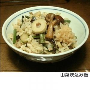 水煮で山菜炊込み飯