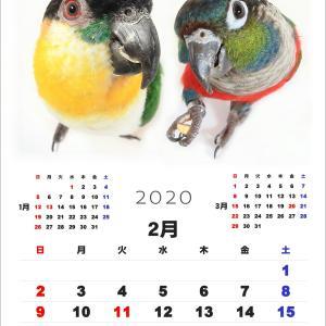 来年のカレンダー写真選び