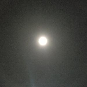 月暈(つきがさ)を目撃しました