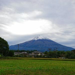 国勢調査の勘違い & 今日の富士山