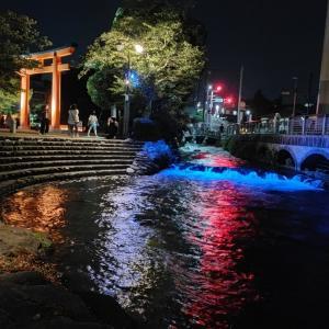 神田川も見どころ❗ 2021神田川&富士山本宮浅間大社ライトアップ