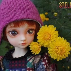 花とこころちゃん