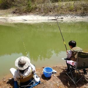 池の水ぜんぶ抜かれた。魚を救え