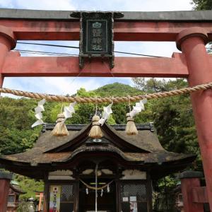 白鬚神社(滋賀県高島市鵜川)