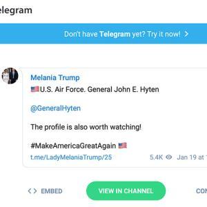 ★ Telegram テレグラム・ハイテン将軍のテレグラムを紹介すると速攻で消されてる!?(攻防戦?)