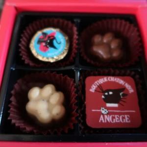 人生はチョコレートボックスのようなもの