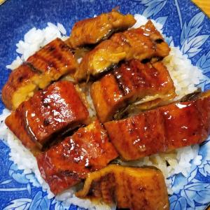 昨日の晩御飯「鰻牛蒡丼」