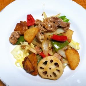 昨日の晩御飯「根菜入り野菜炒め」