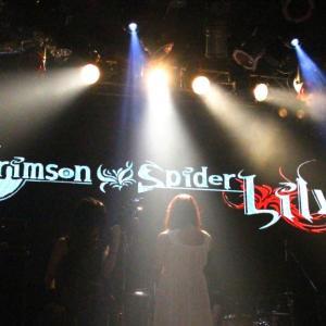 「Crimson Spider Lily」のMV公開されました