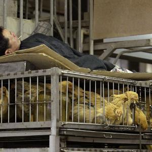 中国発新型ウイルス発生源はヘビか、武漢市は封鎖で日本でも2人目の感染者