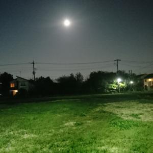吉祥寺の月夜