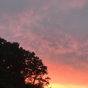 スカーレット決意の夕焼け