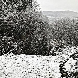 予報「秩父積雪30㎝」が外れて良かった朝。