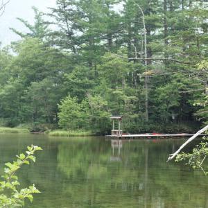 神秘的な明神池