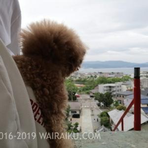 和歌浦を一望!和歌浦天満宮の楼門越しの絶景を愛犬と見てきたよ!
