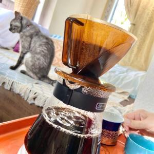 猫と珈琲❣️