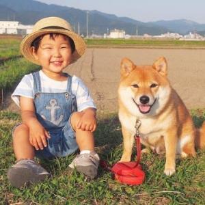 🐕 赤ちゃんと柴犬のほのぼの成長記録・・・めっちゃーなごむなぁ