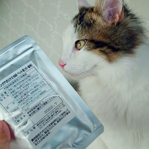 犬猫用キングアガリスク100免疫サプリの王様