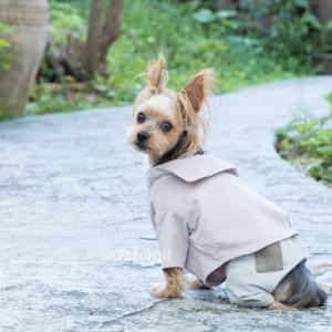 ★世界的流行色の犬服。ピンク系のセーラーカラーシャツ