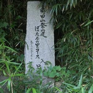 角田山縦走
