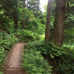 二王寺岳から二本木山