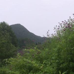 雨の番屋山