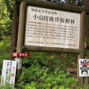 大谷山・鳴沢峰・菅名岳周回