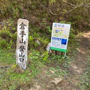 倉手山のシャクナゲ