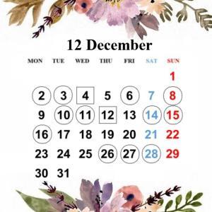 【12月レッスンスケジュール】