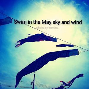 5月の風に乗ろうとしたら...緊急事態!?