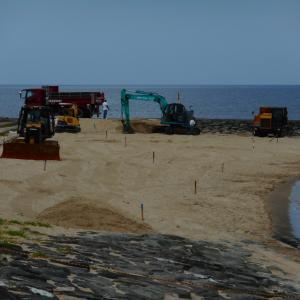 海水浴場の砂浜整備