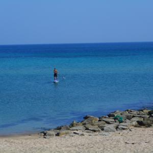 静かな海のひと時