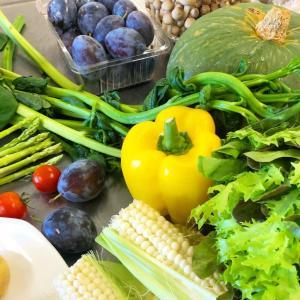 キュートな日に旬野菜といちじくパンな新月