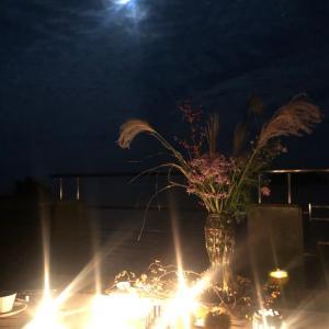 満月の会ウルフ会