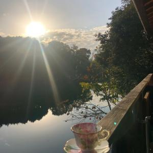 秋晴れ〜キラキラ太陽