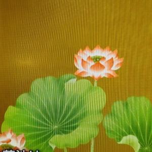 地球上で最も合理的で科学的な宗教は仏教で在り日本で開花した親鸞聖人の教え浄土真宗です